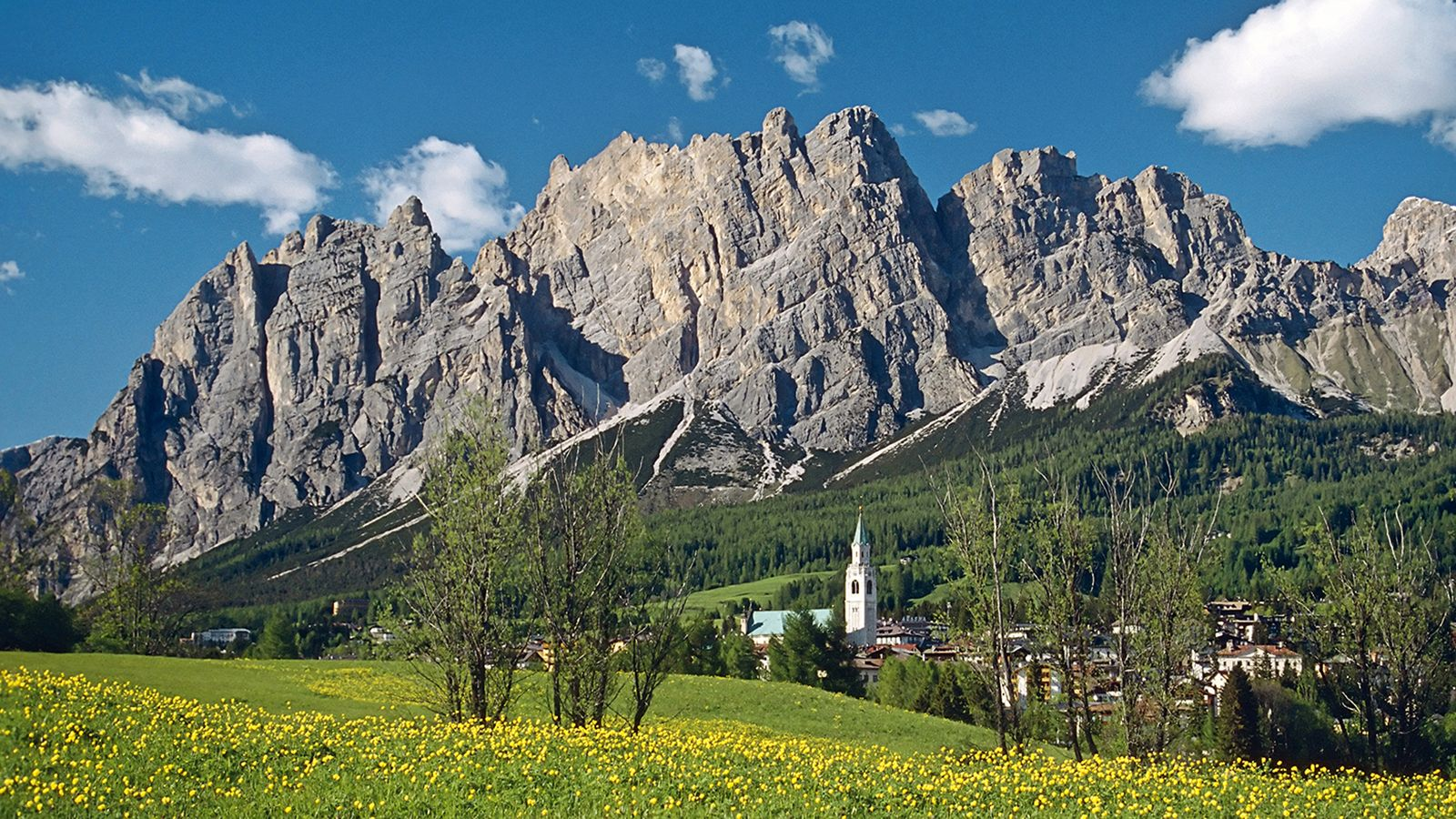 Cortina summer season
